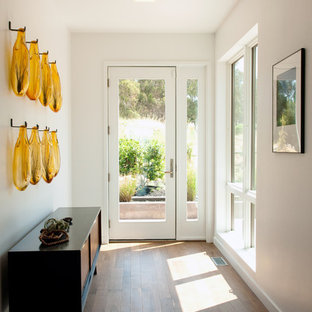 Entryway - small contemporary medium tone wood floor entryway idea in San Francisco with white walls and a white front door