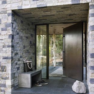 Inspiration pour une porte d'entrée design avec une porte pivot et une porte en bois foncé.