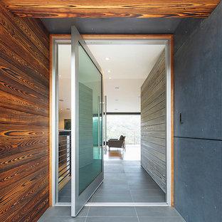 Esempio di una porta d'ingresso design con una porta a pivot e una porta in vetro