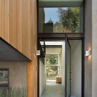 Idéer för en modern ingång och ytterdörr, med betonggolv och en pivotdörr