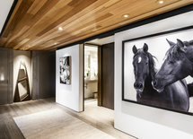 Can you tell me where the photograph of the horses is from?