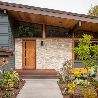 75 Beautiful Midcentury Modern Front Door Pictures Ideas
