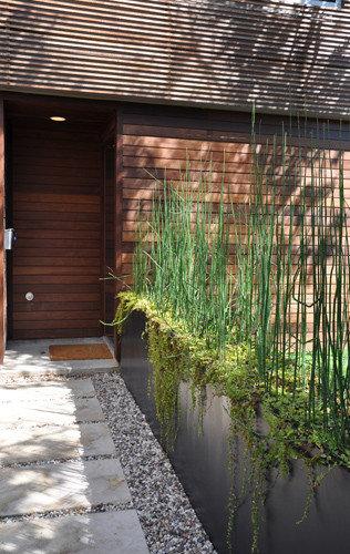 Narrow Planter Design Ideas & Remodel Pictures   Houzz
