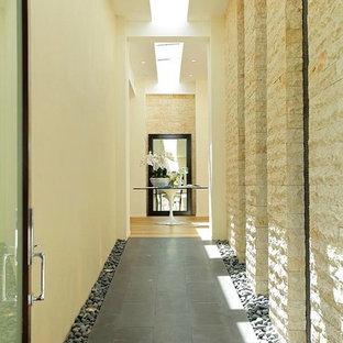 Modern Luxury Vestibule