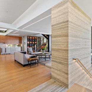 Idéer för att renovera en mellanstor funkis foajé, med vita väggar, ljust trägolv, en pivotdörr, mörk trädörr och brunt golv