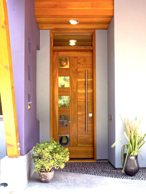 Front Door Pull Handle | Houzz