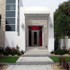 Modern Entry by Neoporte Modern Door