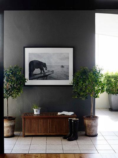 Klassisch modern Eingang by Claire Stevens Interior Design