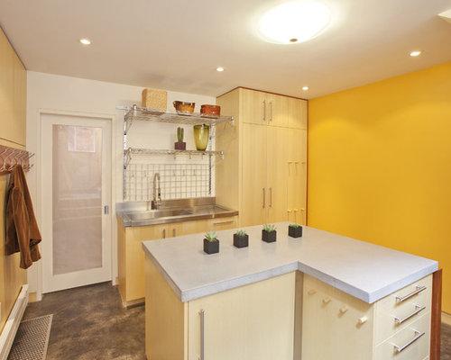 tiny houses basement design ideas renovations photos