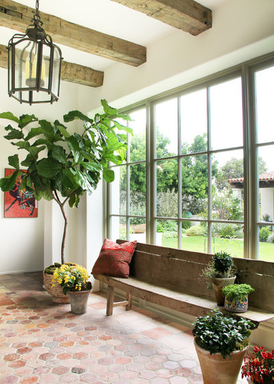 ... Favorite Indoor Plants. Mediterranean Entry By Chris Barrett Design