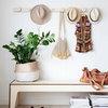 10 Zimmerpflanzen, die gerne ein Schattendasein fristen