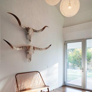 Réalisation d'un hall d'entrée sud-ouest américain avec un mur blanc, une porte simple et une porte en verre.