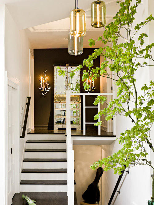 Split Level Home Foyer : Split level entry houzz