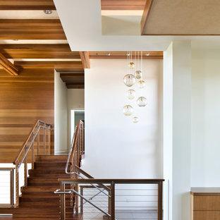 Immagine di un ingresso minimalista con pareti bianche e parquet scuro
