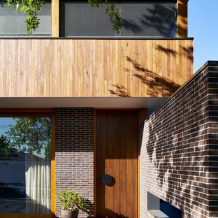 This is an example of a contemporary front door in Melbourne with brown walls, dark hardwood floors, a single front door, a dark wood front door and brown floor.