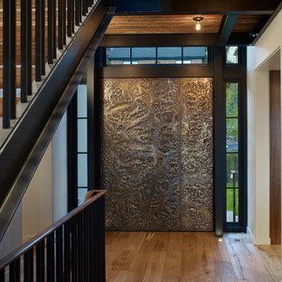 На фото: прихожие в современном стиле с коричневой входной дверью