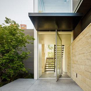 Cette image montre une porte d'entrée design avec une porte pivot et une porte en verre.