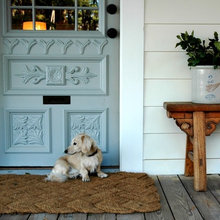 How to Free Your Home of Pet Odour