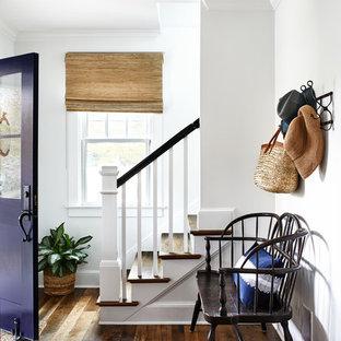 Пример оригинального дизайна: узкая прихожая в морском стиле с белыми стенами, паркетным полом среднего тона, одностворчатой входной дверью, фиолетовой входной дверью и коричневым полом