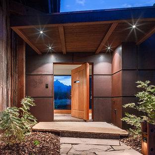 Trendy slate floor entryway photo in Other with metallic walls and a medium wood front door