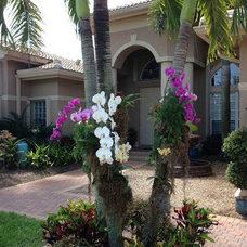 Mediterranean Entry by Jaguar Garden Designs