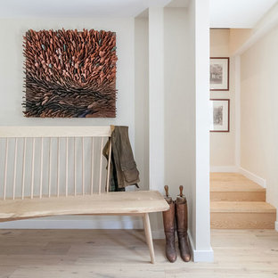 Contemporary Entryway Design Ideas & Remodeling Pictures | Houzz