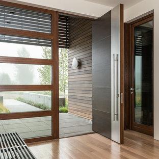 Ispirazione per un ingresso o corridoio contemporaneo con pareti bianche, pavimento in legno massello medio, una porta a pivot e una porta in legno scuro
