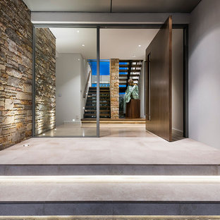 Photo of a mid-sized contemporary front door in Perth with concrete floors, a pivot front door and a dark wood front door.