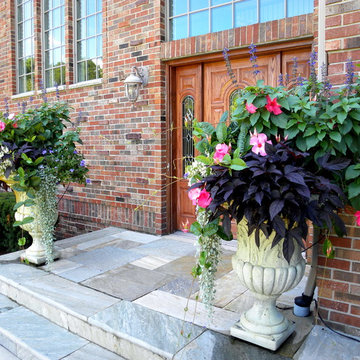 Spring & Summer Containers