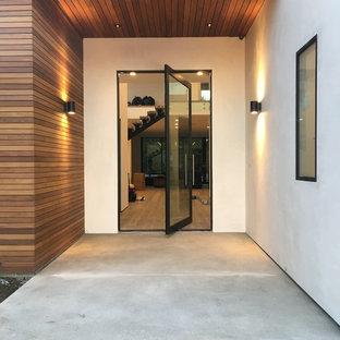 Idee per una grande porta d'ingresso minimalista con pareti grigie, pavimento in cemento, una porta a pivot e una porta in metallo