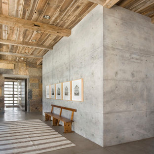 Inspiration for a rustic concrete floor entry hall remodel in Houston with gray walls