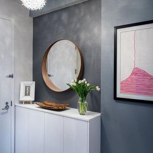 Idee per un ingresso o corridoio design di medie dimensioni con pareti grigie, parquet scuro, una porta singola e una porta bianca