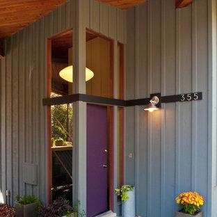 Идея дизайна: прихожая в современном стиле с фиолетовой входной дверью