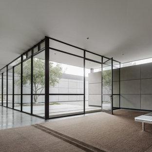 Aménagement d'un très grand vestibule contemporain avec un mur gris, béton au sol, une porte pivot, une porte en verre et un sol gris.