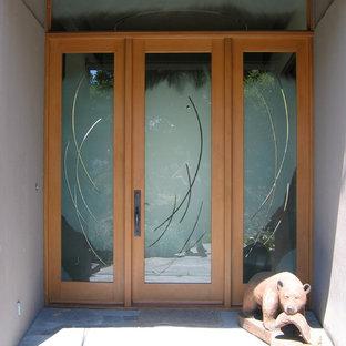 Entryway - large contemporary entryway idea in San Francisco with a glass front door