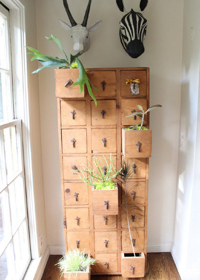 shabby chic plant shelves yes you can grow a plant in that
