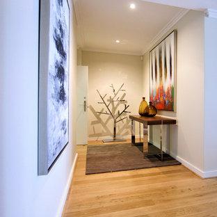 Exempel på en stor modern ingång och ytterdörr, med vita väggar, ljust trägolv, en enkeldörr, en vit dörr och gult golv