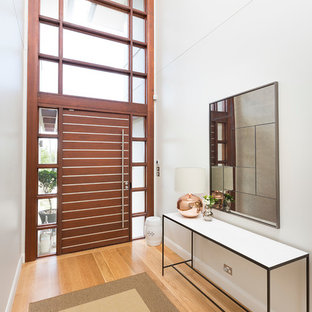 Photo of a contemporary entryway in Sydney with white walls, light hardwood floors, a single front door and a dark wood front door.