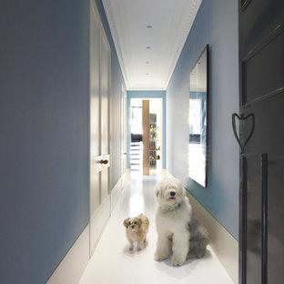 シドニーの片開きドアコンテンポラリースタイルのおしゃれな玄関ホール (青い壁、黒いドア、白い床) の写真