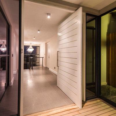 Pivot front door - contemporary pivot front door idea in Other with a white front door