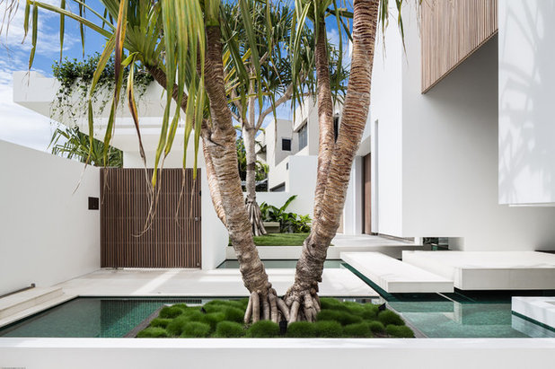 Contemporary Entry by Tim Ditchfield Architects