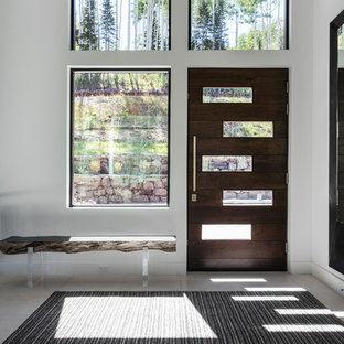 Esempio di una porta d'ingresso contemporanea con pareti bianche, una porta singola e una porta in legno scuro