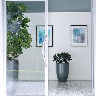 シドニーの中くらいの両開きドアコンテンポラリースタイルのおしゃれな玄関ドア (グレーの壁、カーペット敷き、ガラスドア) の写真
