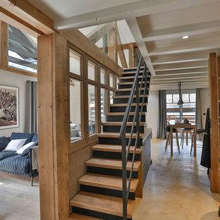 Photos et idées déco d\'escaliers contemporains avec des ...