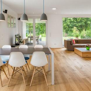 Großes Modernes Esszimmer mit weißer Wandfarbe, hellem Holzboden und weißem Boden in Sonstige