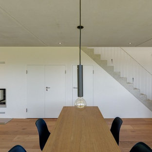 Inspiration for a large scandinavian medium tone wood floor dining room remodel in Other with white walls