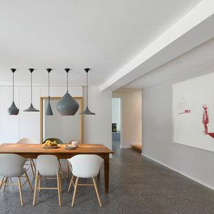 Großes, Offenes Modernes Esszimmer Mit Grauer Wandfarbe Und Linoleum In  Stuttgart