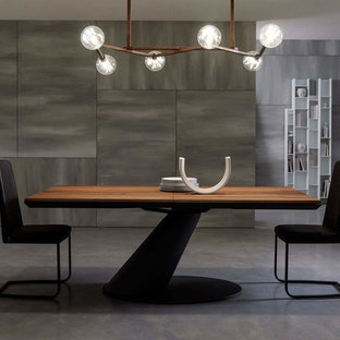 Inspiration for a large contemporary open plan dining room in Other with concrete flooring, grey floors, white walls, a hanging fireplace and a metal fireplace surround.