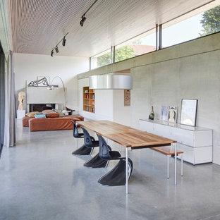 Offenes, Geräumiges Modernes Esszimmer mit grauer Wandfarbe, Betonboden, grauem Boden, Kamin und verputztem Kaminsims in Stuttgart