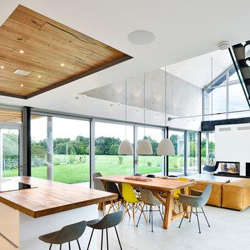 offener Wohnbereich mit großzügiger Glasfassade und Kamin